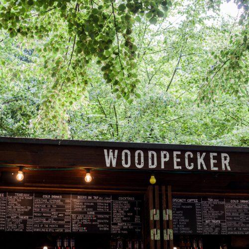 Woodpecker Parc de Bruxelles